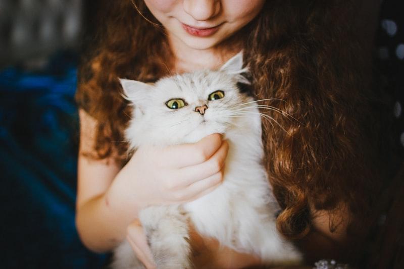 Kind met kat